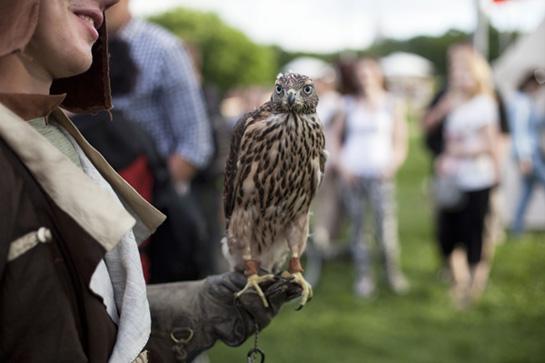 300 дней лета: Исторический фестиваль «Времена и эпохи» в ...