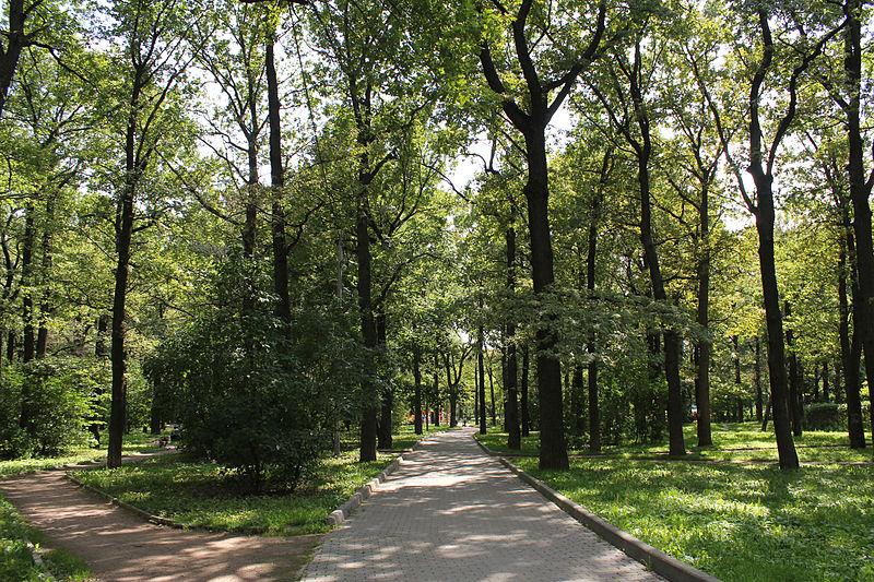 Dubki_park