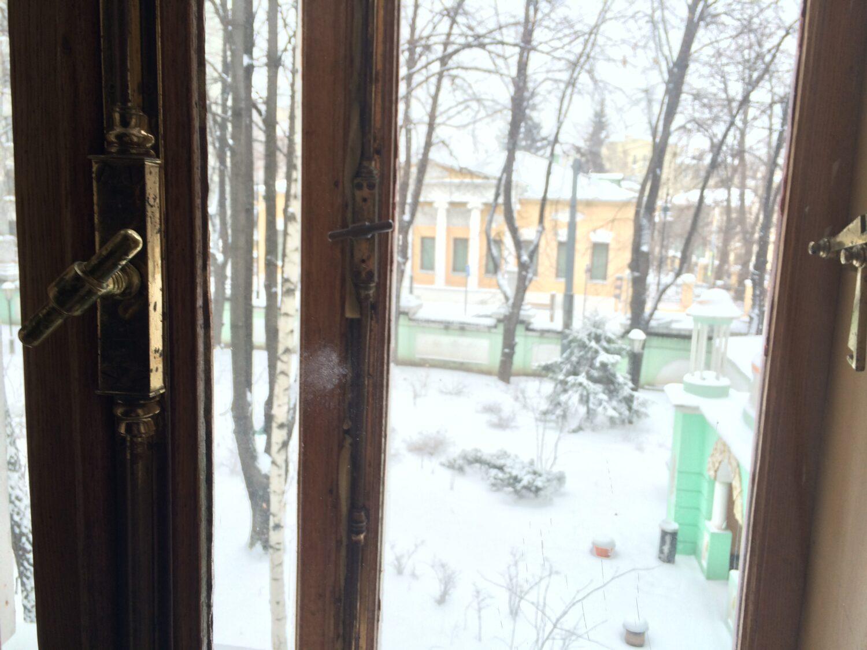 vid iz okna