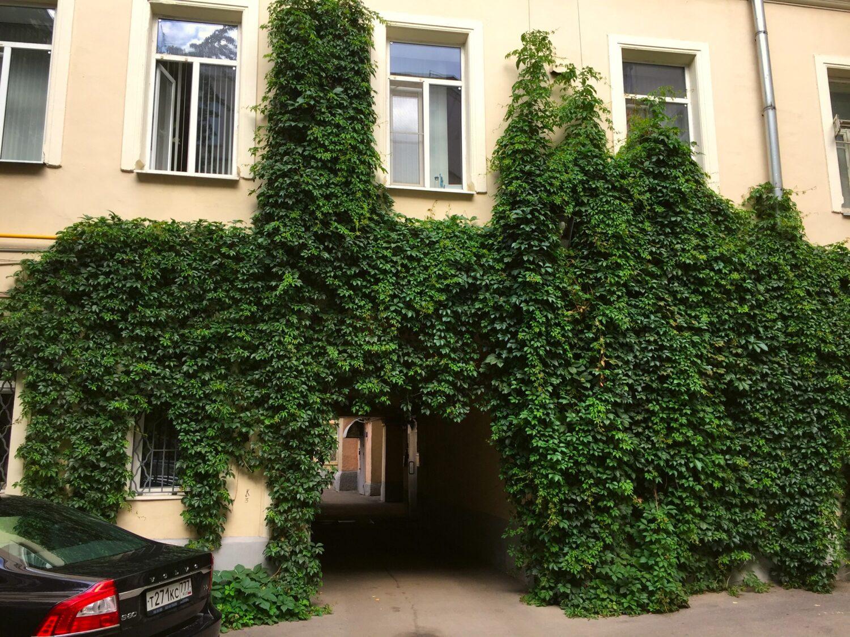 дворы Покровки